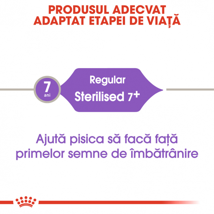 Royal Canin STERILISED 7+ Hrana Uscata Pisica 2