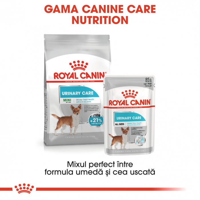 Royal Canin URINARY CARE Hrana Umeda Caine 4