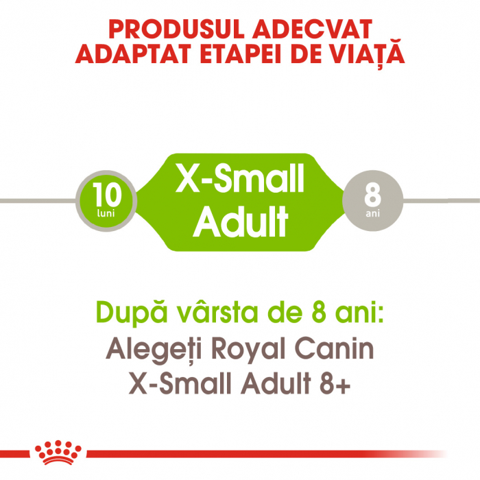 Royal Canin X-Small Adult hrana uscata caine 2