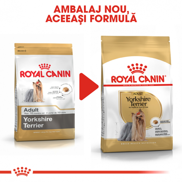 Royal Canin YORKSHIRE TERRIER Adult Hrana Uscata Caine 3