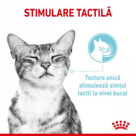 Royal Canin Sensory Feel, hrana umeda pisici, stimularea simtului tactil (in sos), 12 x 85 g [1]