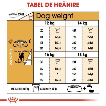 Royal Canin Beagle Adult hrana uscata caine, 3 kg4