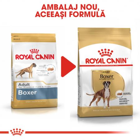 Royal Canin BOXER Adult Hrana Uscata Caine3
