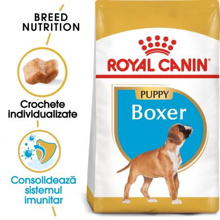 Royal Canin BOXER Puppy Hrana Uscata Caine0