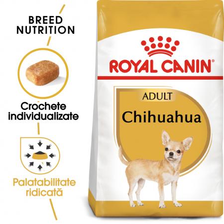 Royal Canin CHIHUAHUA Adult Hrana Uscata Caine0