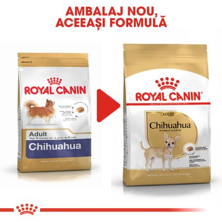 Royal Canin CHIHUAHUA Adult Hrana Uscata Caine4