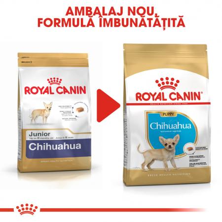 Royal Canin CHIHUAHUA Puppy Hrana Uscata Caine6