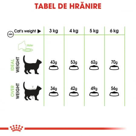 Royal Canin DIGESTIVE CARE Hrana Uscata Pisica4
