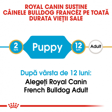 Royal Canin French Bulldog Puppy hrana uscata caine junior, 3 kg1