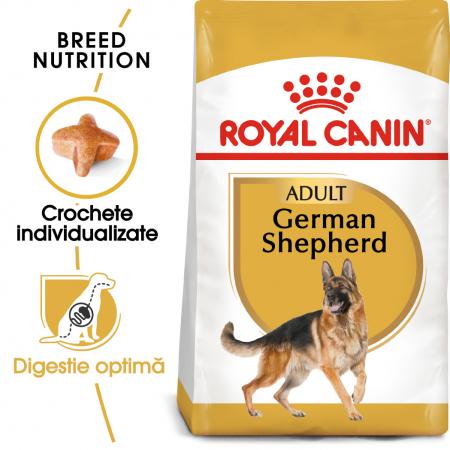Royal Canin German Shepherd Adult hrana uscata caine Ciobanesc German0