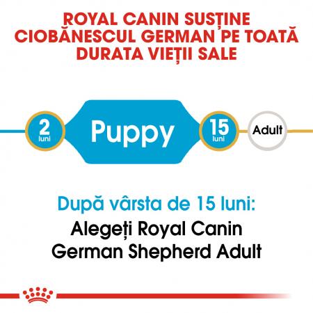 Royal Canin German Shepherd Puppy hrana uscata caine junior Ciobanesc German, 3 kg [1]