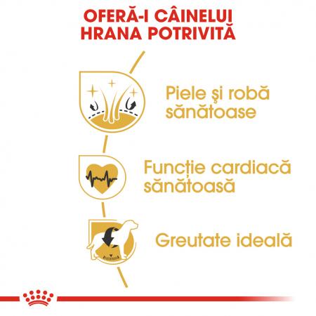 Royal Canin GOLDEN RETRIEVER Adult Hrana Uscata Caine3