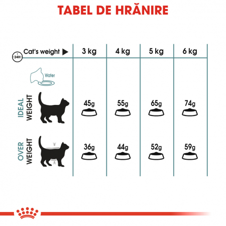 Royal Canin HAIRBALL CARE Hrana Uscata Pisica2