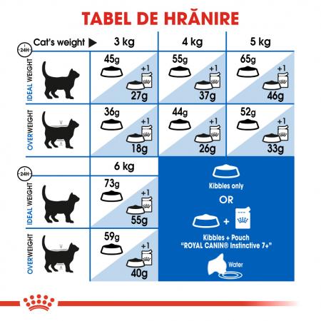 Royal Canin INDOOR 7+ Hrana Uscata Pisica