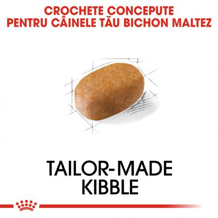 Royal Canin MALTESE Adult Hrana Uscata Caine2