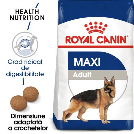 Royal Canin Maxi Adult hrana uscata caine0