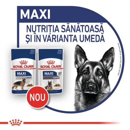 Royal Canin Maxi Ageing Hrana Umeda Caine2