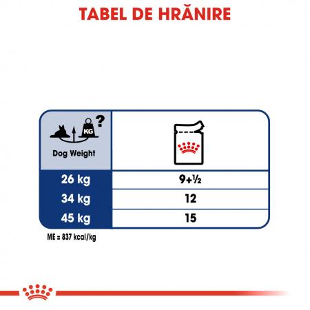 Royal Canin Maxi Ageing Hrana Umeda Caine5