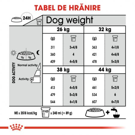 Royal Canin MAXI JOINTCARE Hrana Uscata Caine5