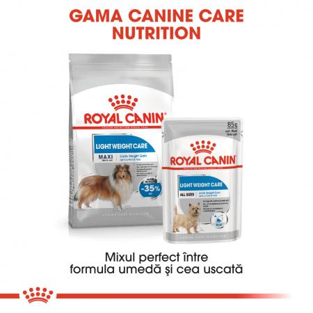 Royal Canin Maxi Light Weight Care Adult hrana uscata caine, limitarea cresterii in greutate [5]