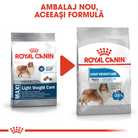Royal Canin Maxi Maxi light weight care Hrana Uscata Caine1