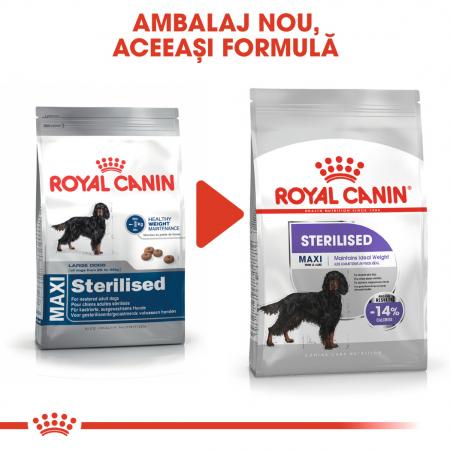 Royal Canin MAXI STERILISED Hrana Uscata Caine1