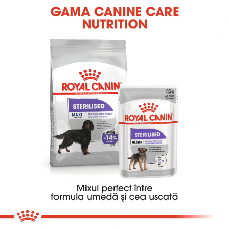 Royal Canin MAXI STERILISED Hrana Uscata Caine5