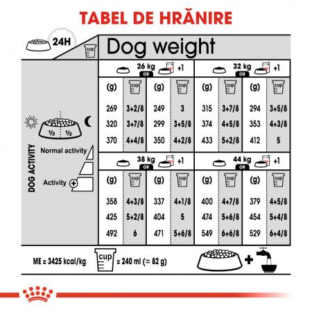 Royal Canin MAXI STERILISED Hrana Uscata Caine6