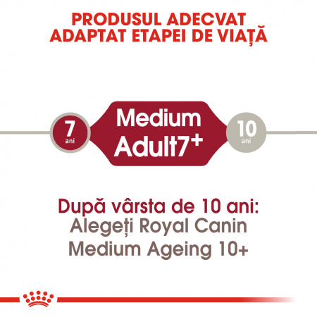 Royal Canin MEDIUM Adult 7+ Hrana Uscata Caine1