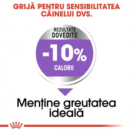 Royal Canin Medium sterilised Hrana Uscata Caine3