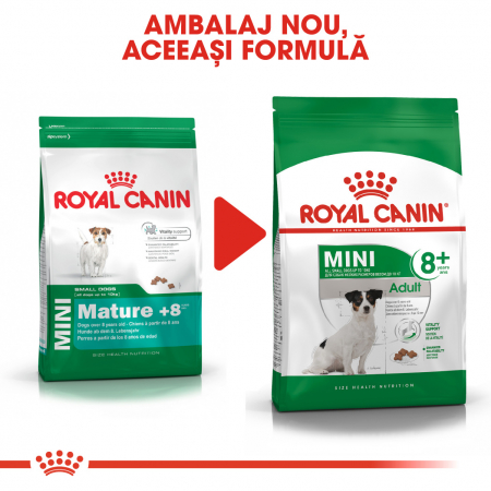 Royal Canin MINI Adult 8+ Hrana Uscata Caine5