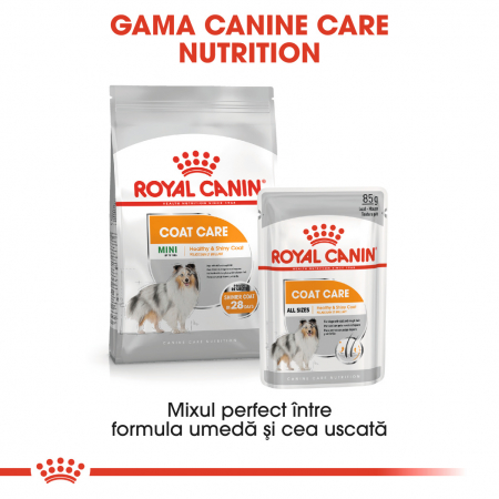 Royal Canin MINI COAT CARE Hrana Uscata Caine4