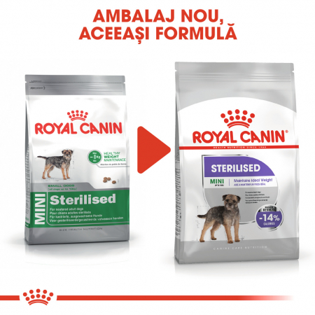 Royal Canin Mini Sterilised Hrana Uscata Caine1