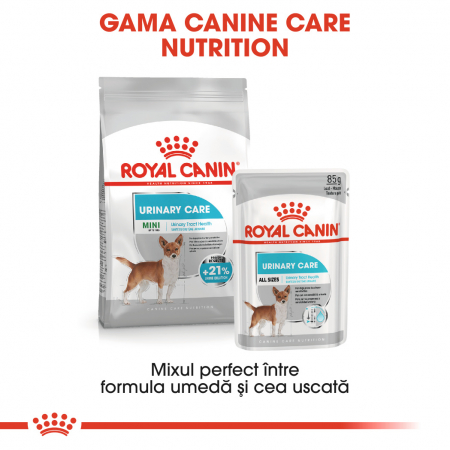 Royal Canin MINI URINARY CARE Hrana Uscata Caine4