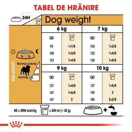 Royal Canin PUG Adult Hrana Uscata Caine5