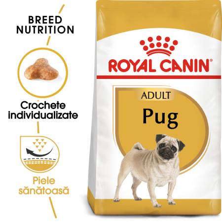 Royal Canin PUG Adult Hrana Uscata Caine0
