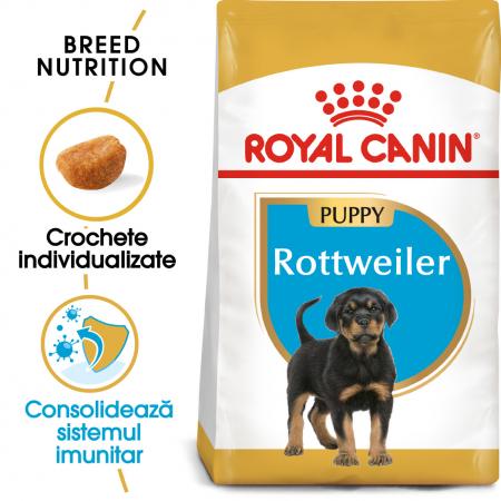 Royal Canin ROTTWEILER Puppy Hrana Uscata Caine0