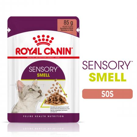 Royal Canin Sensory Smell, hrana umeda pisici, stimularea mirosului (in sos), 12 x 85 g [8]