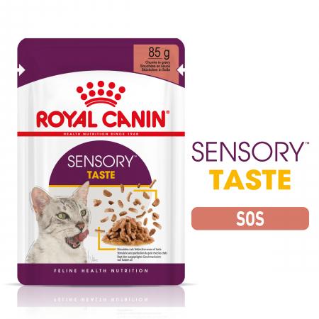 Royal Canin Sensory Taste, hrana umeda pisici, stimularea gustului (in sos), 12 x 85 g [0]