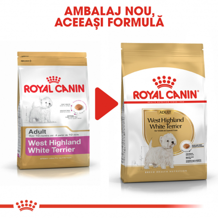 Royal Canin WEST HIGHLAND WHITE TERRIER Adult Hrana Uscata Caine3