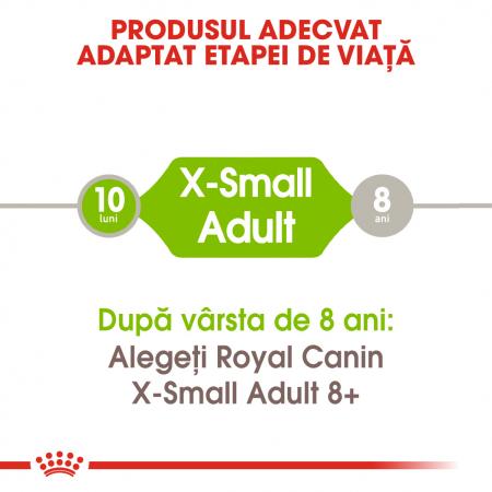 Royal Canin X-Small Adult hrana uscata caine2