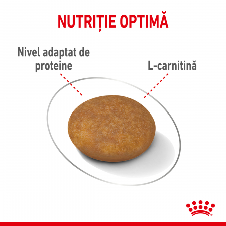 Royal Canin XSmall Light Weight Care Adult hrana uscata caine, limitarea cresterii in greutate, 3 kg [3]