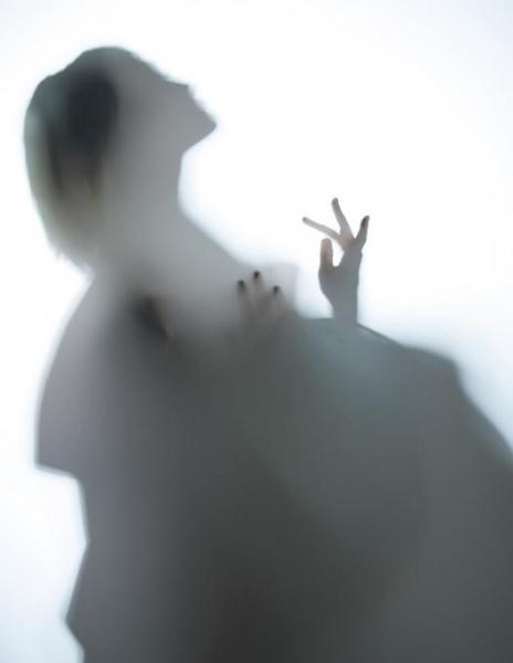 Colorama Translum rola translucenta 1.52 x 1.35m mediu 2