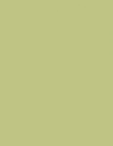 Colorama fundal foto verde Fern 2.72 x 11m 0