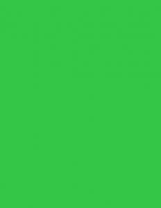 Colorama fundal PVC Spring Green1