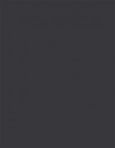 Colorama fundal PVC Coal1