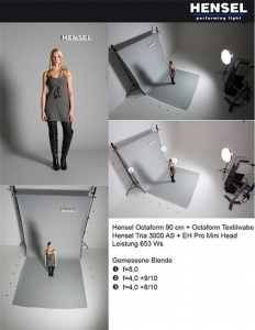 Hensel 4000090 softbox octaform 90 cm6