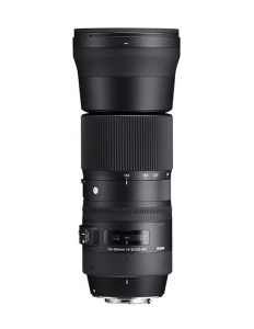 Sigma 150-600mm f 5-6,3 DG OS HSM Contemp.Nikon1