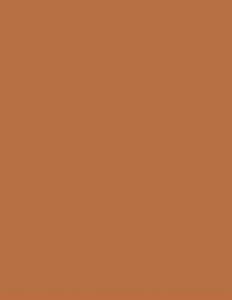 Colorama fundal foto maro Ginger2.72 x 11m [1]
