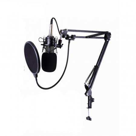 ProMic Kit Podcast Microfon USB cu casti ATH-M30X [1]